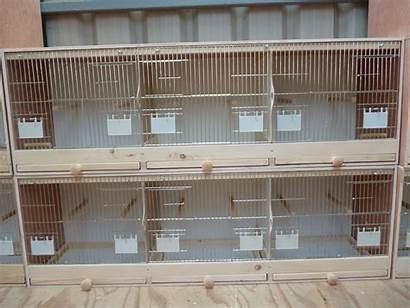 Breeding Cages Bird Finch Cage Pigeon Canary