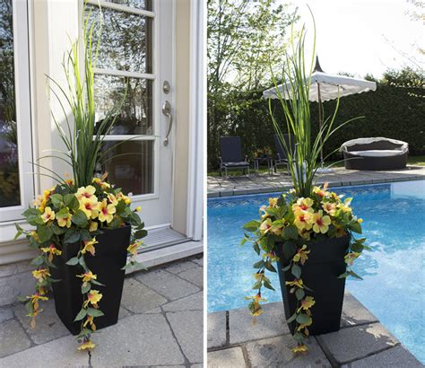 jardini 232 re en pot hibiscus jaunes et blancs 40 d 233 cors v 233 ronneau