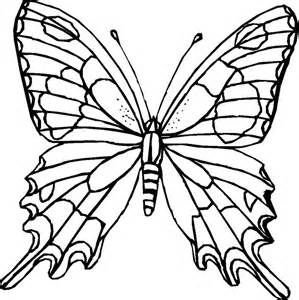 HD wallpapers b is for butterfly coloring page