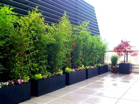 bamboo plants nyc upper west side nyc roof garden deck terrace concrete pavers bamboo fibergl contemporary