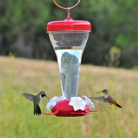 best hummingbird feeder pet 124tf top fill 24 ounce plastic