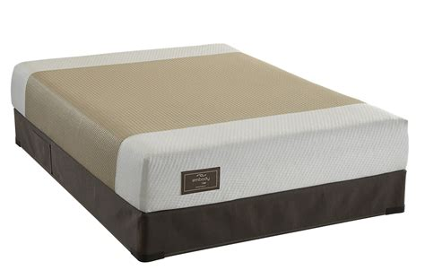 sealy bed embody by sealy prophecy memory foam mattress