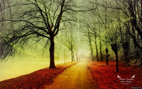 Natural Beauty Wallpaper In Various Season Best Blog