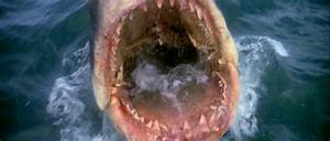 Panic on the 4th of July: Jaws: On a 35-Year-Old Obsession