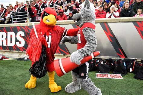 nc state bulletin board material louisville pack insider