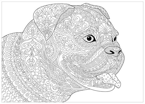 dog french bulldog dogs adult coloring pages