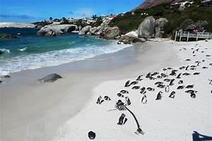 Blitz Reisen Südafrika : s dafrika rundreisen urlaubsreisen g nstig buchen auf e ~ Kayakingforconservation.com Haus und Dekorationen