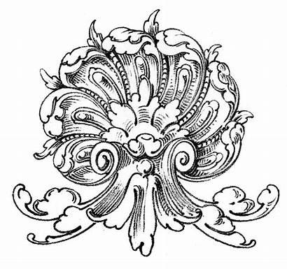 Shell Clip Ornament Ornamental Scrolls Antique Graphics