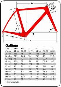 Gallium Size Chart Speedhub