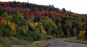 Ely, Minnesota: Top Areas for Scenic Fall Color