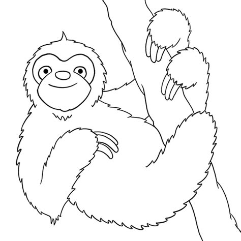 sloth face coloring pages