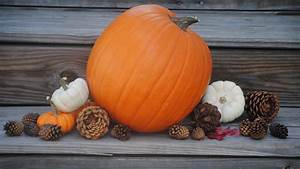 Fall, Wallpapers, With, Pumpkins, 57, Images