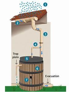 Bac Récupérateur D Eau De Pluie : eau de pluie fonctionnement du syst me de r cup ration ~ Premium-room.com Idées de Décoration