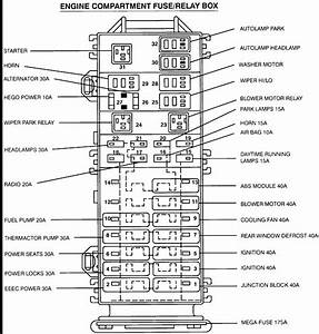1988 Dodge Dakotum Fuse Box Diagram