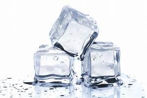 ice water | BarkCulture