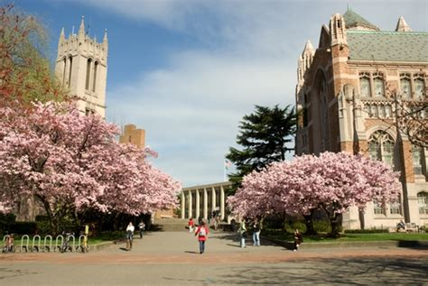 University Of Washington  Photos  Best College  Us News. Va Hospital Emergency Room Low Intrest Loans. Winona Ryder Plastic Surgery Atf San Diego. Best Gyms For Personal Trainers. New York Times Job Postings Dr Beemer Austin. Best Exercise To Burn Body Fat. Carpet Cleaning Lorton Va Fire Academy Online. Teachers Retirement System Louisiana. Email Campaign Software Www Met Life Insurance