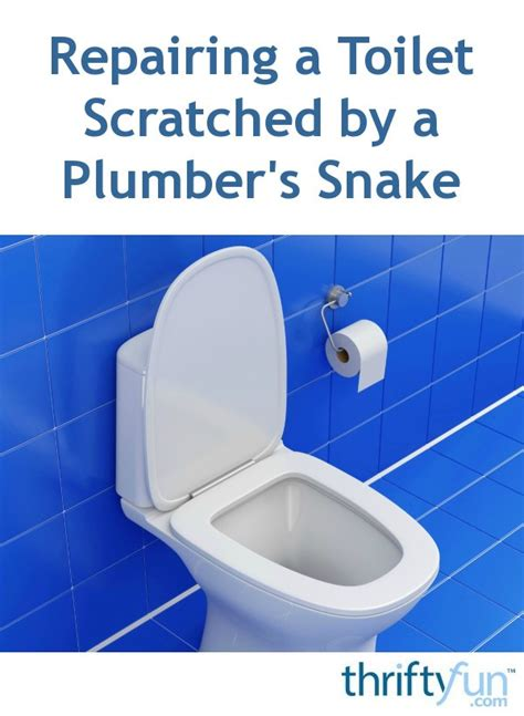 repairing  toilet scratched   plumbers snake thriftyfun