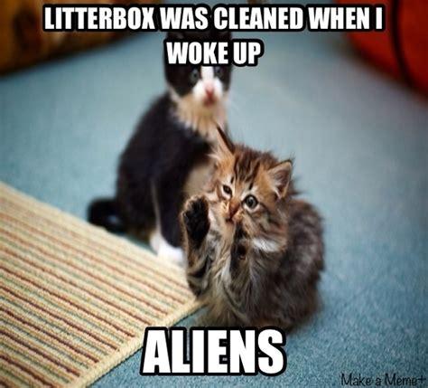 Cat Alien Meme - alien cat memes