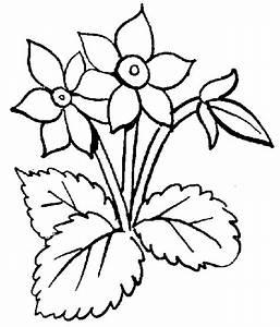 Flower black and white black and white flower clipart ...
