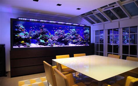 Fish Tank Design for Luxury Townhouse in London