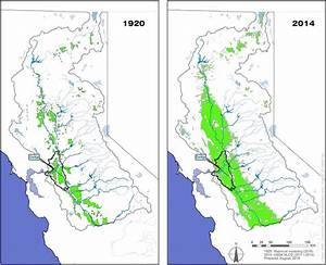 These Maps Compare The Extent Of Irrigated Area In The San