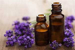13 Uses For Lavender Oil  The Only Essential Oil You U0026 39 Ll Need