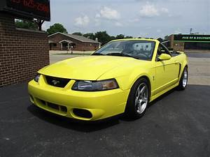 2003 Ford Mustang SVT Cobra for Sale | ClassicCars.com | CC-1104113