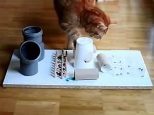 Katzen Fernhalten Von Möbeln : fummelbrett intelligenzspielzeug f r die katze ~ Michelbontemps.com Haus und Dekorationen