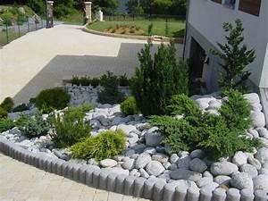 conifere massif sans entretien projet jardin pinterest With idees amenagement jardin exterieur 1 creer un jardin avec des cactus et des palmiers