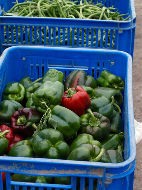 green green organic kitchen pumpkin leek and anchovy pizza the fruitful kitchen 3992