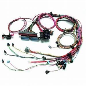 Painless Wiring 60509 1999