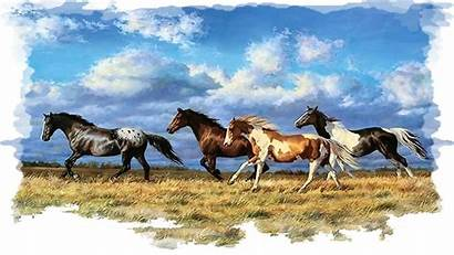 Horse Horses Painting Running Paint Wallpapers Stallion