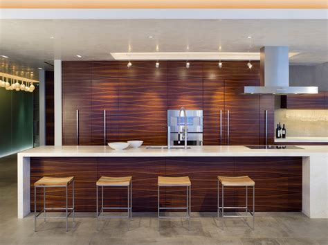 zebra wood cabinets Kitchen Modern with bar pulls concrete
