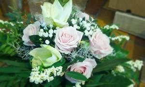 Wie Oft Blumen Gießen : unser blumen abo der blumenfreund der blumenfreund ~ Orissabook.com Haus und Dekorationen
