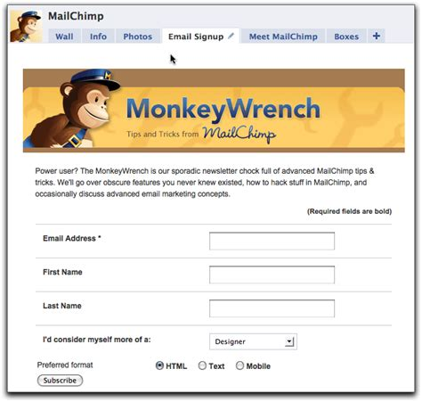 code for pretty horizontal mailchimp signup form mailchimp s facebook signup app