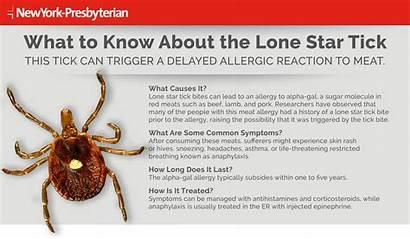 Tick Bite Ticks Lyme Know Tips Lone