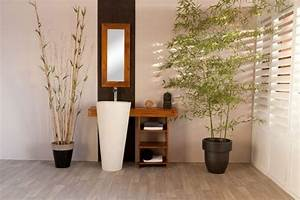 Meuble De Salle De Bain En Bambou : bambou salle de bain ideeco ~ Edinachiropracticcenter.com Idées de Décoration