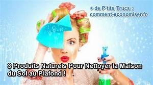 Appareil Nettoyage Sol Pour Maison : 3 produits naturels pour nettoyer la maison du sol au plafond ~ Melissatoandfro.com Idées de Décoration