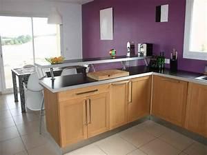 Cuisine ouverte avec comptoir cuisine en image for Petite cuisine équipée avec meuble de salle a manger blanc