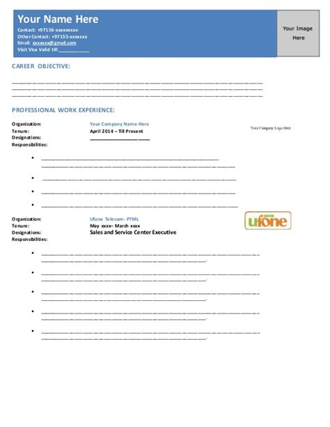 How To Prepare The Professional Resume by Uae Standard Professional Resume Format