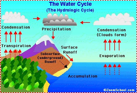 Water Cycle Diagram Earthguide by Water And The Water Cycle For