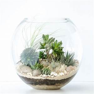 Get your Quirky on and Customise! Happy Place Terrariums