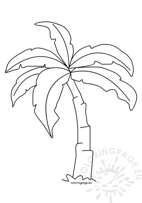tropical palm tree template coloring page
