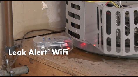 zircon leak alert wifi smart water detector sends email