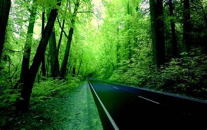 Road Nature Wallpapers Resolution