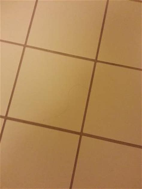 Hair On Bathroom Floor  Picture Of Springhill Suites