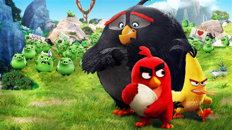 Animated Bird Wallpaper - the angry birds hd wallpaper background image