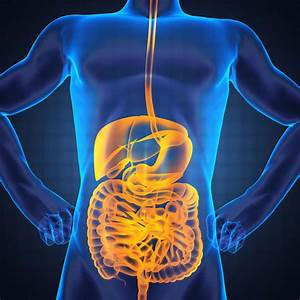 5 supplements for IBS | New Hope Network