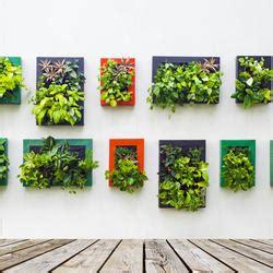 lebende pflanzenbilder kaufen kreativ idee paletten als bl 252 hender sichtschutz anleitung mein sch 246 ner garten