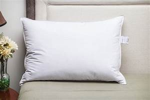 down dreams r classic too firm pillow featured in many With buy hampton inn pillows